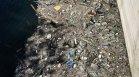 Helpbook: Огромно количество бутилки и отпадъци плават по язовир Въча