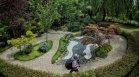 Японската градина в столичния зоопарк радва малки и големи посетители