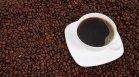 Производството на захар и кафе може да намалее с до 59% заради климатичните промени