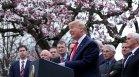 Тръмп помилва 100 души в последния си ден като президент