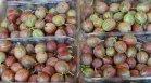 60% от пластмасата, произвеждана всяка година, се ползва за опаковане на храни