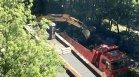 От HelpBook: В столичен район се изкореняват 50-годишни дървета